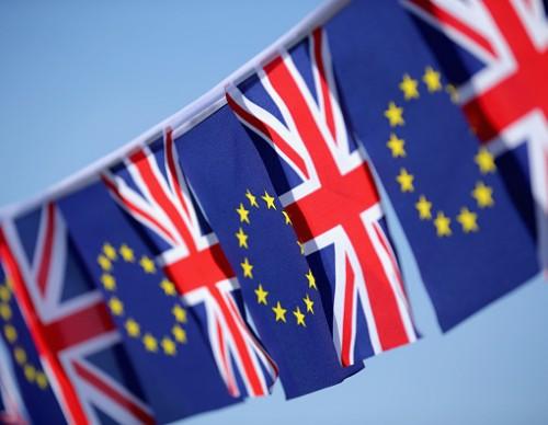 EU Referendum - Signage And Symbols