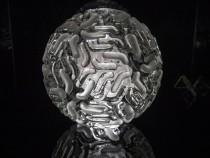 A Preview Of Luke Jerram's Glass Microbiology Sculptures