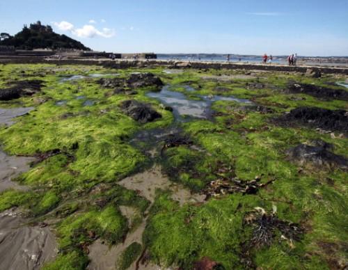 Cornish Seaside Resorts Prepare For The Summer Holiday Season