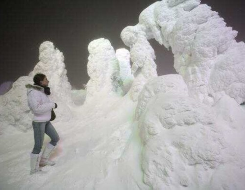 Silver Frost Is Illuminated At Zao Ski Resort In Japan