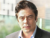 Benicio Del Toro 'Savages' Melbourne Photo Call