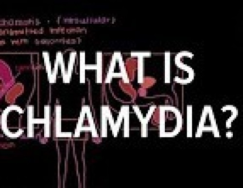 PrEP: The Hope For Chlamydia