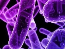 Dangerous Antibiotic-Resistant Infections On The Rise Among Children By 700%, New Study Claims