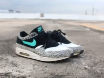 Air Max 1 ATMOS Elephant SOLE SMASH