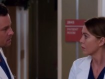 Grey's Anatomy Season 13 Episode 15 Promo