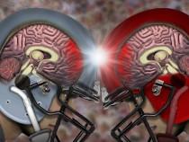 Head Injuries Change Genes Leading To Brain Diseases