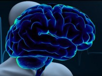 More Brain Activity Seen Than Previously Thought