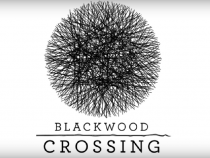 Blackwood Crossing Release Date Revealed; Here's What To Expect