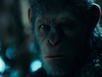 'War For The Planet Of the Apes' Trailer: Caesar Confronts Colonel