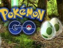 Pokemon GO 19th Nest Migration In A Nutshell