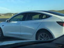 Tesla Model 3 New Colors Spotted Ahead Official Unveiling