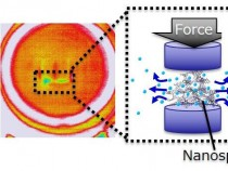 Developing a New Type of Refrigeration via Force-Driven Liquid Gas Transition (IMAGE)