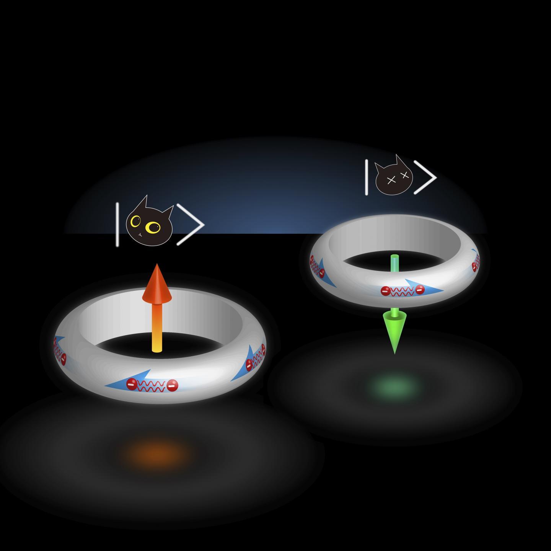 Superpositioned Qubit