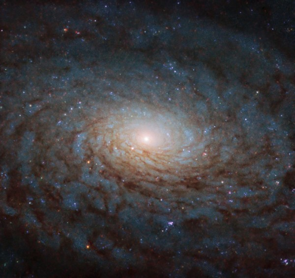 NASA's Hubble Telescope Captures Mesmerizing Images of Spiral Galaxies and Interstellar Comet Borisov
