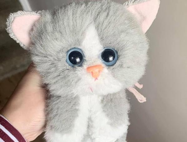 Kitty Kitty Kitten Toy (after restoration)