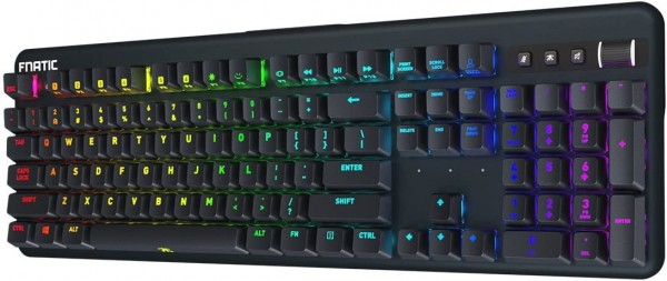 Fnatic Streak - LED Backlit Full RGB Mechanical Gaming Keyboard - Cherry MX Blue Switches - Ergonomic Wrist Rest - Premium Pro Esports Gaming Design