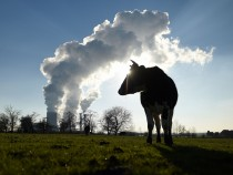 Renewable energy source in Germany
