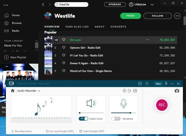 VideoSolo Screen Recorder Audio Recorder
