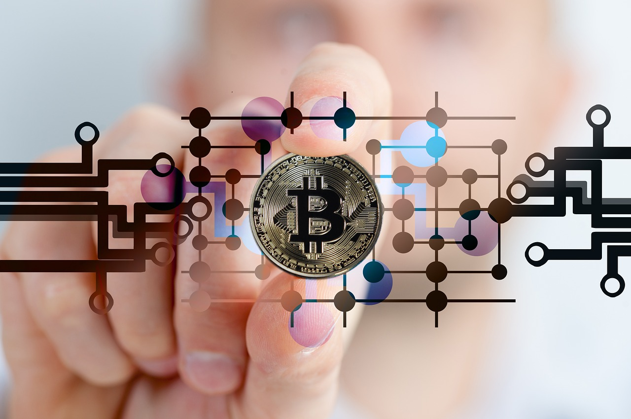 What are the surprising changes that occurred after the immediate emergence of bitcoins?