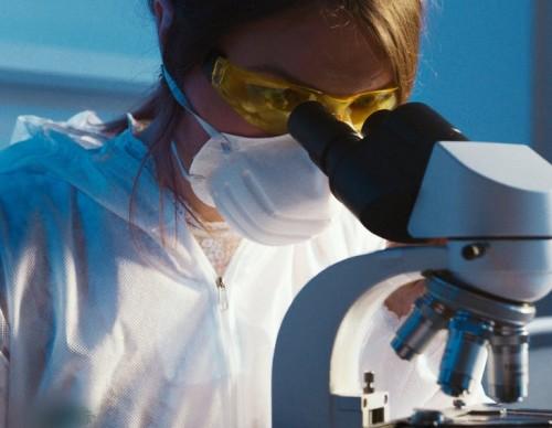 How Can CRISPR Revolutionize the World Through Environmental Science?