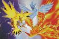 Pokemon Legendary Birds