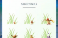 Pokemon Go Guide: How Does The New 'Sightings' Work?