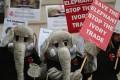 Anti Ivory Protesters Outisde The Illegal Wildlife Trade Conference