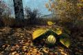 Skyrim Special Edition - Worth It? - Exclusive Footage