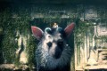 The Last Guardian is a platforming puzzler that is set in a mysterious land.