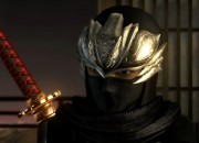 Ninja Gaiden fans are hoping that a sequel is coming soon even if it means that another game will suffer for it.
