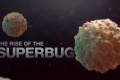 The Rise of the Superbug