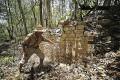 Chactun Mayan remains