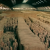 A group of people that lured tourists in a fake Terracotta Warriors exhibit was caught by the Chinese government. The entire exhibit was comprised of modern replicas.