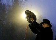 The groundhog, Punxsutawney Phil, has been participating in the Groundhog Day since 1886. It is believed that if Punxsutawney Phil, sees his shadow, it means that the weather will be stuck with six more weeks of winter.