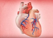 A new cancer medicine has shown benefits other than just for cancer. A cancer medicine regenerates heart tissue as well.