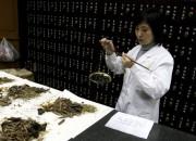 With the continuous efforts to eradicate HIV, have we already reached the solution? Considering that there is no globally recognized cure for the disease, how significant is China's plans in treating the pandemic disease with the use of traditional Chinese medicine? Could it be the answer to HIV? Find out what experts have to say