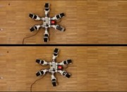 Robotics have come a long way. Now a six-legged robot runs faster than natural ones.