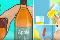 Everything You Have To Know About Apple Cider Vinegar Diet