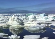 With the continuous efforts to eradicate global warming, can we still do something to at least slow down its inevitable adverse effects? What's the truth behind claims that scientists allegedly wanted to refreeze the Arctic sea ice caps to battle the ice melt? Is this the only solution? If so, how will they do it? Find out what experts have to say
