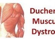 What is Duchenne muscular dystrophy and what causes this genetic disorder? Considering the numerous biotech companies venturing in various cure for diseases nowadays, could their CRISPR therapy put an end to this ongoing problem? Will it be the advent of the disease's cure? Find out what health experts have to say