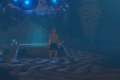 NPCs In The Legend of Zelda: Breath Of The Wild React To A Naked Link