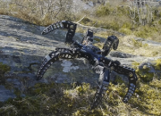 The MX-Phoenix is a six-legged, tarantula-inspired robot that tackles rough terrain with ease. This hexapod robot that has exceptional abilities was built in its inventor's garage.