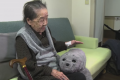 Emotional Robotic Pets Provide Emotional Care To Elderly