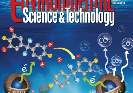 Cover of ES&T (IMAGE)