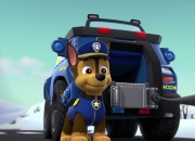 Many people on social media are angry at the famous Nickelodeon cartoon Paw Patrol. The cartoon revolves around dogs with jobs, so what's wrong with it?